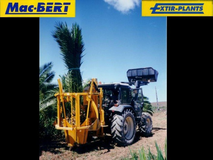 tree spade tractor palm